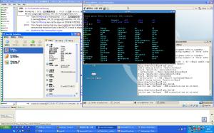Windows模擬的Linux模擬的Linux