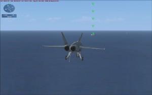 FSX遠看航母